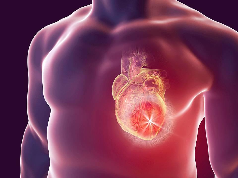 نارسایی قلبی چیست