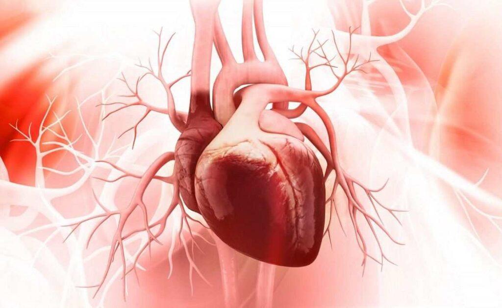 قطع مصرف تریاک بعد از عمل قلب باز