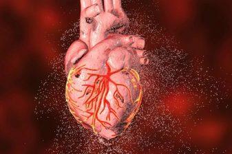 نارسایی قلبی در سالمندان